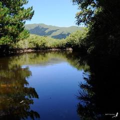 090830  (Bettaman) Tags: taiwan   subtropical taroko  tarokonationalpark    thecentralmountainrange  hohuonshan