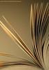 Book (ANOODONNA) Tags: idea book alrasheed alanood العنود الرشيد anoodonna