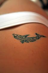 MY NEW TATTOO (Patricia Accica) Tags: brazil tattoo dolphin tatuagem golfinho maoritattoo maoritatuagem