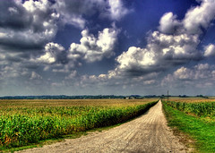 country road (Mandana (on and off)) Tags: road summer sky clouds canon landscape vanishingpoint illinois corn cornfield midwest raw country farmland september heartland 2009 hdr puffyclouds gravelroad persective coutryroad