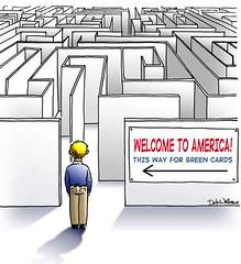 green_card_maze