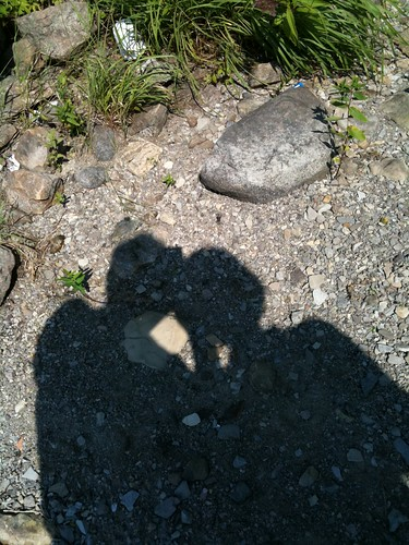 Les ombres Rodrigue