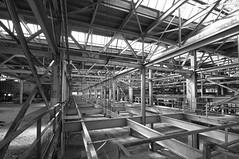 The Elevated Dance Floor (taylorkoa22) Tags: bw white black newmexico lens nikon angle steel wide sigma albuquerque abq nm 1020mm beams trespassing railyards d300 marcgutierrez