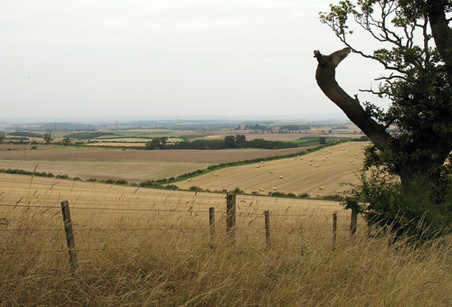 Flodden Fields
