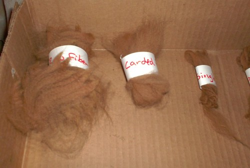 Raw carded alpaca fleece fiber clouds roving rolag