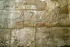 When Kings Were Gods (p medved) Tags: temple egypt egipto karnak luxor gypten templo egitto hieroglyphics egypte egito tempel egypten templom tempio tapnak hram egipt misr misir hieroglyphen chrm tempelj geroglifici hierglifos jeroglficos templu egipat hieroglyfer egyptus hijeroglifi