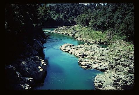 3958 Pelorus River
