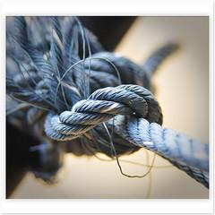 bleu (Yorick...) Tags: blue blues rope knot bleu bleus nœud