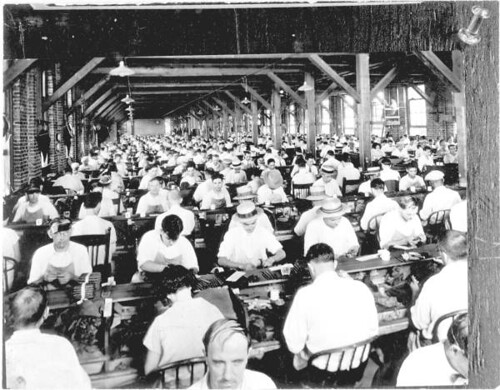 Employees hand rolling cigars in a cigar factory: Ybor City, Florida