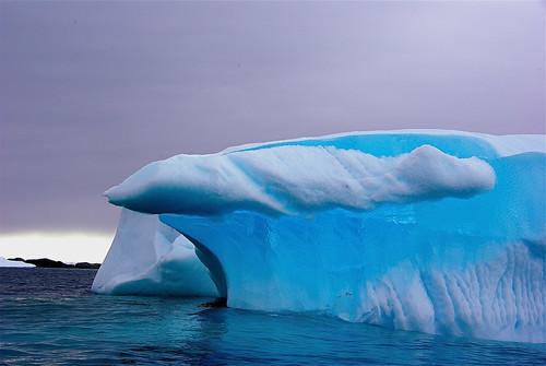 Antarctica flickr photo