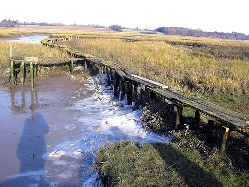 Semi-frozen marsh