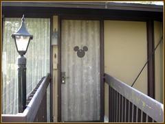 Hidden Mickey Door