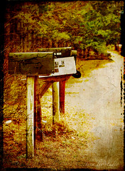 snail mail (Tina Lee Studio) Tags: trees canon path mailboxes textures aplusphoto vanagram