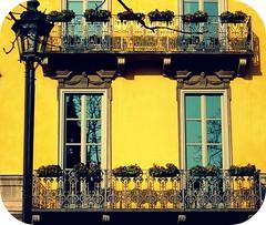 Giallo di mezzo pomeriggio (Borbuletachiara) Tags: windows primavera yellow torino amarillo amarelo giallo balconies fiori lampioni lamposts finestre balconi piazzacarlina