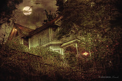 this is so spooky (Kris Kros) Tags: old moon white house art texture birds lady night photoshop photography bride high scary shot dynamic haunted full fullmoon spooky horror kris range hdr textured grudge kkg the photomatix kros kriskros 5xp kkgallery