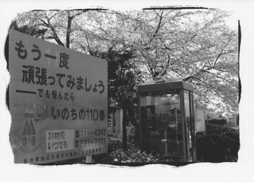 090416 仙台新港公園 もう一度