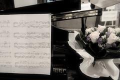 Note Floreali (Matrix - ex Alebopp) Tags: flowers italy music rome roma tivoli flickr italia note musica fiori 2009 pianoforte spartito romamor nikond300