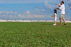 DSC_0212 (matzhuang) Tags: sun grass marinabarrage