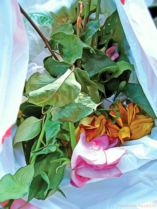Dead Roses by Karina Allrich