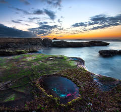 Jelly fish Pool (Nazar's Collection) Tags: pink blue sunset sky orange moon green water yellow clouds moss jellyfish explore pools lowtide abbas frontpage nazar sigma1020mm maoribay longexposrue nazarab