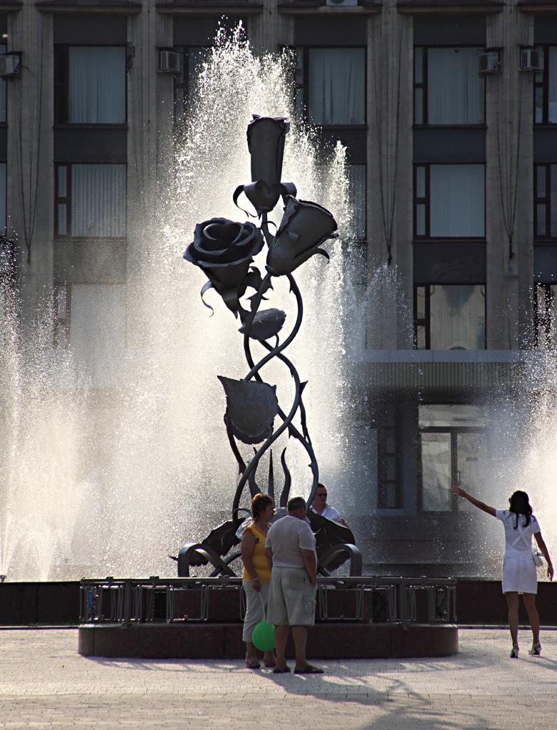 Донецк. 29 августа 2009г.