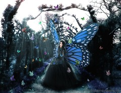 Butterfly fairy (*-_DaoRyaN_GriFfiThS_-*) Tags: blue black azul forest photoshop butterfly hair flying wings picture butterflies fairy fantasy fantasia oil photomerge retouch dao mariposa hada oleo cs3 griffiths daoryan