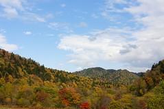 束の間の青空が紅葉を照らす