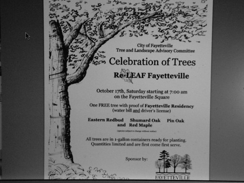 Celebration of Trees 16 October 2009 DSCN6932tree giveaway