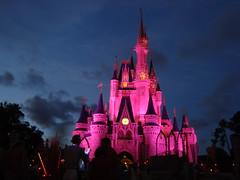 Cinderellas Castle by night 5 (lilimachadohistoriadora) Tags: usa orlando florida disney disneyworld eua magickingdom estadosunidos cinderela cinderellascastle castelodacinderela lilimachado