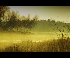 Douce matine (Thomas Michel) Tags: morning mist canada fog landscape landscapes quebec top voyeur 80 ultimateshot thomasmichel vanagram passiondclic