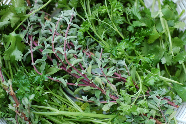 Herbs For Chimichurri Sauce by Eve Fox, Garden of Eating blog