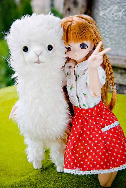 Miu and her alpaca