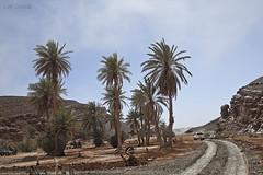 RaidAventura4x4 (L. Granda) Tags: africa trip travel viaje sahara expedition car canon landscape desert offroad 4x4 4wd paisaje coche maroc marocco desierto marruecos expedicion 5dii