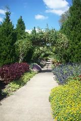 cheekwood botanical gardens (courtneysmilestoo) Tags: flowers nature nashville