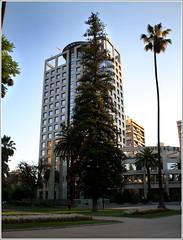 Mutual de Seguridad (Jan Ronald Crans) Tags: chile trees santiago building tree architecture office chili boom alameda architectuur gebouw santiagodechile palmboom verzekeraar mutualdeseguridad avbernardoohiggins
