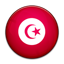 Flag of Tunisia PNG Icon
