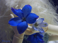 =Virocana with Delphinium (borometz) Tags: blue flower color art catchycolors toy doll buttercup vampire bjd    dim 13  delphinium ws balljointdoll  danbi whiteskin dollinmind  virocana
