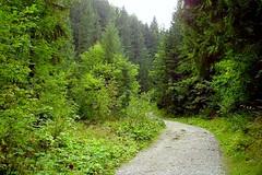 entering to the valley (green_lover (I wait for your COMMENTS!)) Tags: tatramountainsnationalpark westerntatras tatra tatry tatryzachodnie poland dolinamałejłąki valley path trail forest trees nature green superhero