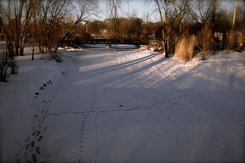 The Frozen Creek