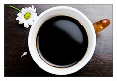 Coffee (by mcveja)
