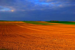 Colours of nature, Happy Earth Day (natureloving) Tags: blue red sky storm france colour green nature field landscape nikon soil earthday naturesfinest d40x natureloving
