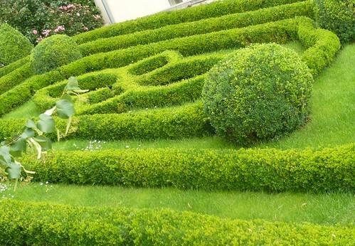 Knott a garden