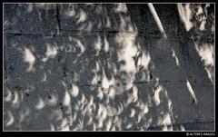 Crescents (alton.tw) Tags: light shadow summer sun tree texture college monochrome stone campus island solar eclipse asia university goldenrectangle crescent refraction astronomy taipei formosa curve 台灣 台北 alton 2009 altonthompson ntnu 日食 nationaltaiwannormaluniversity 國立臺灣師範大學 唐博敦 taiwanphotographers altonsimages