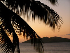 Fijian Sunset (Daria Angeli) Tags: ocean sunset fiji contrast palm oceania