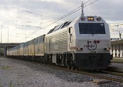 333.365b 5.11.08 (Mariano Alvaro) Tags: train tren diesel 333 prima teco renfe clesa