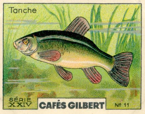 gilbert rivière 11