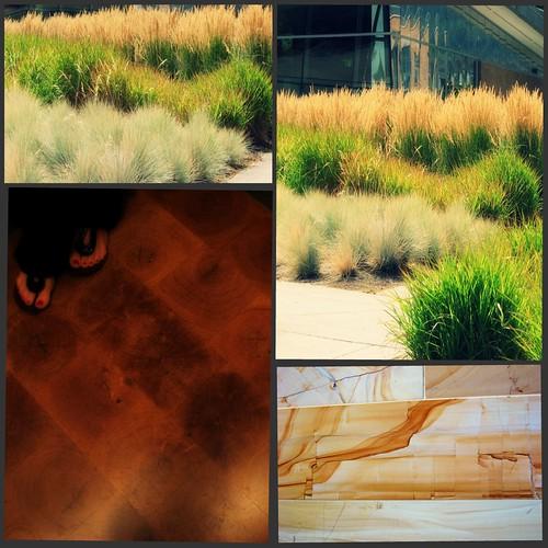 Portland collage 5