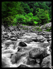 (N.i.M.A) Tags: trees green water forest river iran  hdr gilan masouleh     guilan  masuleh    platinumheartaward