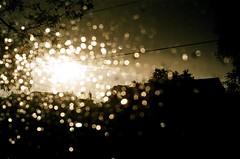 Sunshiny Rain (J.T.R.) Tags: leica toronto rain rangefinder sunshiny minilux