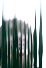 (Joshua Blankenship) Tags: london designmuseum mandyblankenship